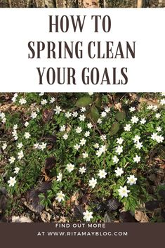 How to spring clean your goals - With Ease Self Development, Personal Development, Long Take, Womens Wellness, Goal Planning, Achieving Goals, Time Management Tips, Fitness Motivation Quotes, Wrong Turn