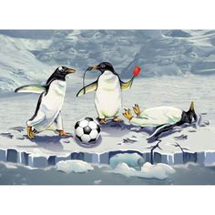 Soccer Penguins Christmas Card. Soccer Penguins Christmas Card. These penguins love the game just like you! Let everyone on your Christmas card list know just how much you love soccer. Boxed set of 10 cards and envelopes. Inside message reads; Have a Great Season. Made in USA.. Price: $3.99
