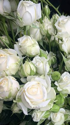 Types Of White Flowers, White Lotus Flower, Types Of Roses, Wholesale Flowers Online, Wholesale Roses, White Spray Roses, White Roses, Summer Wedding Bouquets, Wedding Flowers