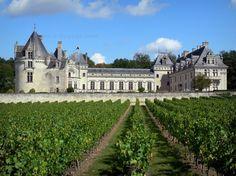 El Valle del Loira es Patrimonio Mundial desde el año 2000. Tiene 280kms de largo y ocupa una superficie de 800 km 2 donde se podrán disfrutar maravillosos paisajes naturales y la historia y cultura viva en sus 20 castillos. A contiuación le dejamos el itinerario, ubicación y fotos de los 20