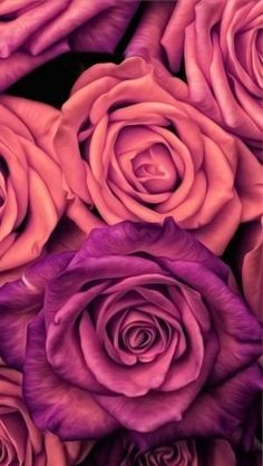 Ideas Flowers Background Wallpapers Rose For 2019 Amazing Flowers, Love Flowers, Beautiful Roses, Dried Flowers, Summer Flowers, Pictures Of Flowers, Colorful Flowers, Paper Flowers, Flowers Nature