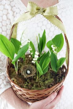 Lily of the valley, a favorite of mine