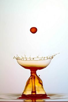 fotografie-bubbels-water-nsmbl (4)