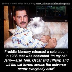Freddie | Celebrities Report
