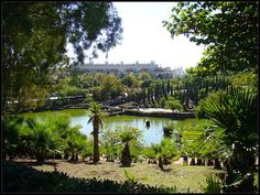 Parque de la Paloma in Benalmádena.  You can't really miss it: More than 200,000m2 of green area in the centre of the town make Parque La Paloma (Paloma Park) one of the largest and most spectacular parks on the Costa del Sol.