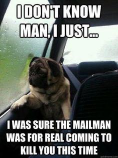 Introspective Pug | Memes