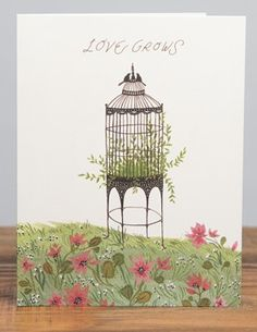 Love Grows | Red Cap Cards | Illustrated greeting card by Becca Stadtlander #birdcage