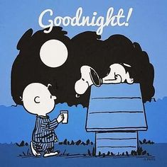 Comics Peanuts, Peanuts Cartoon, Peanuts Snoopy, Charlie Brown Und Snoopy, Snoopy Und Woodstock, Goodnight Snoopy, Image Pinterest, Beautiful Good Night Images, Snoopy Pictures