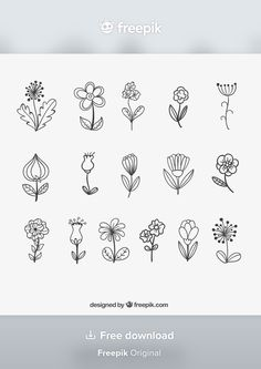 Doodle Drawings, Doodle Art, Easy Drawings, Tattoo Drawings, Simple Doodles, Cute Doodles, Beautiful Flower Drawings, Illustration Blume, Dragon Tattoo For Women