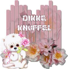 Dikke knuffel Good Morning Texts, Dutch Quotes, Happy Day, Smiley, Good Night, Hug, Teddy Bear, Pets, Animals