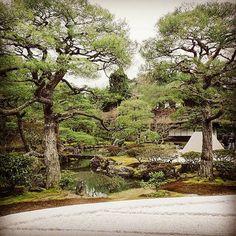 View at Ginkaku-ji #ginkakuji #japanesegarden #kyoto #zen : @cybersamuelquinteros
