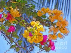 TROPICAL PARADISE Framed Prints, Canvas Prints, Tropical Paradise, Tropical Flowers, Breeze, Greeting Cards, Tapestry, Fine Art, Island