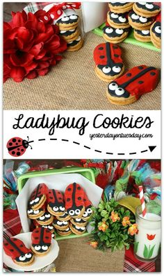Darling Lady Bug Cookies, perfect for a garden party or spring soiree dessert idea kids Mini Desserts, Delicious Desserts, Ladybug Cookies, Cupcake Cookies, Cupcakes, Oreo Dessert, Crackers, Nutter Butter Cookies, Ladybug Party