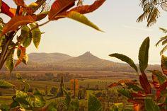 Balaton felvidék by Robert Posza on Timeline Photos, Vineyard, Journey, Mountains, Nature, Painting, Travel, Outdoor, Type 1