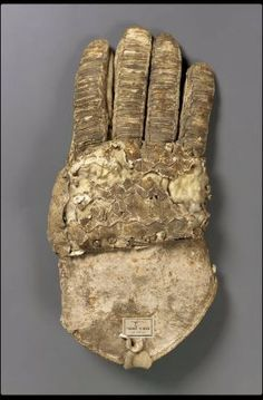 Falconer's Glove
