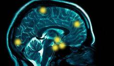 NeuroFocus analyzes brain waves for better games marketing