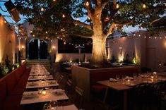 Terrine Restaurant in L. Looking forward to visiting soon! ~LK Best New Restaurant Outdoor Restaurant Design, Outdoor Restaurant Patio, Decoration Restaurant, Tree Restaurant, Restaurant Lighting, Outdoor Dining, Outdoor Patios, Restaurant Exterior, Los Angeles Restaurants