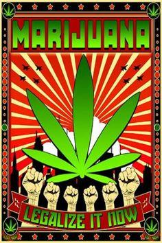 La marihuana es la sustancia menos tóxica y más... - http://growlandia.com/highphotos/media/la-marihuana-es-la-sustancia-menos-toxica-y-mas/