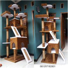Cat Scratcher, Cat Room, Cat Condo, Cat Tree, Kitten, Cats, House, Home Decor, Pets