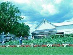 "Home Shalom: Amish Pest Control - for ""all bugs"" #domyownpestcontrol"