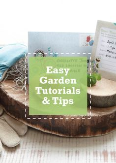 Use these quick-and-easy tips to make your garden bloom!