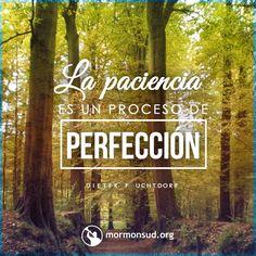 """La paciencia es un proceso de perfección. El Salvador mismo dijo que con nuestra paciencia ganaremos nuestras almas, o como dice otra traducción del texto griego: """"con vuestra paciencia ganaréis dominio de vuestras almas"""" . Paciencia quiere decir perseverar en la fe, sabiendo que a veces es al esperar y no al recibir que más crecemos. Así era en los días del Salvador y sigue siendo así en nuestra época, porque en estos últimos días se nos manda: """"Continuad con paciencia hasta perfeccionaros"""""""