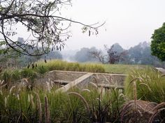 The Riparian House by Architecture BRIO (9)