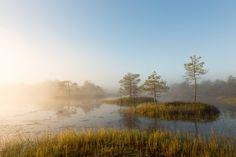 [5625x3750] Sunrise at foggy bog. Meelva landscape protection area Estonia. [OC]