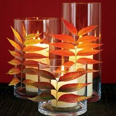 real leaf decorating ideas ...there are many of these Chinese pistache trees on a nearby street of mine too (or use ginko or Jap. maple, etc--also nicely translucent)...the pistache make fabulous display in Fall... press leaves in book overnight, then attach stems with Glue Dots or dots of real glue, etc.