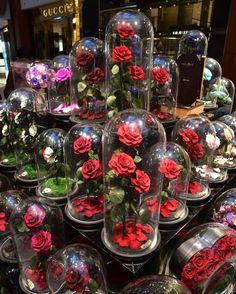 A volte le donne ricevono dei fiori in regalo così belli che si vorrebbe durassero per sempre. Se cerchi una rosa incantata come quella de La Bella e La Be