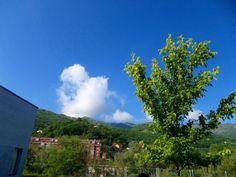 Foto 3:Nube