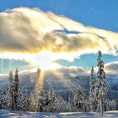 Washington Alpine Resort, epic skiing conditions on Vancouver Island, BC, Canada Victoria Vancouver Island, Vancouver City, Wonderful Places, Great Places, Beautiful Places, O Canada, Canada Travel, West Coast Canada, Mount Washington