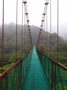 Selvatura Hanging Bridges, Costa Rica.I want to go see this place one day.Please check out my website thanks. www.photopix.co.nz