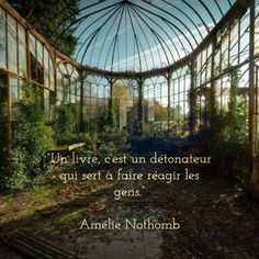 """""""Un livre, c'est un détonateur qui sert à faire réagir les gens."""" Amélie Nothomb"""