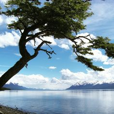 Natural beauty at the end of the world in Ushuaia, Argentina, South America