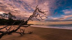 Photograph Takutairaroa Bay by peter rees photography on 500px