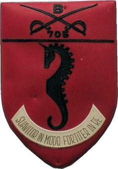 Batalhão de Cavalaria 705 Guiné