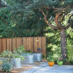 Small Vegetable Garden Design Design, Pictures, Remodel, Decor and Ideas - page 2