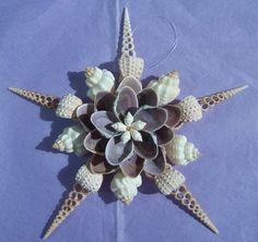 Seashell Window Wall Decor Ornament by OceansofShells on Etsy Seashell Ornaments, Seashell Art, Seashell Crafts, Seashell Wreath, Coastal Christmas, Christmas Crafts, Xmas, Christmas Tree, Seashell Projects