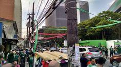 ALLIANZ PARQUE PALMEIRAS SÃO PAULO BRASIL .