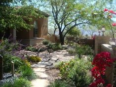 arizona landscape: DESERT LANDSCAPING | DIFFERENT IDEAS TO CONSIDER