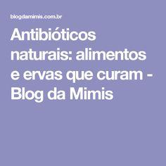 Antibióticos naturais: alimentos e ervas que curam - Blog da Mimis
