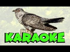 Karaoke, Youtube, Animals, Literatura, Animales, Animaux, Animal, Animais, Youtubers