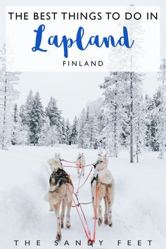 10 Wonderful Things To Do In Lapland | Finland