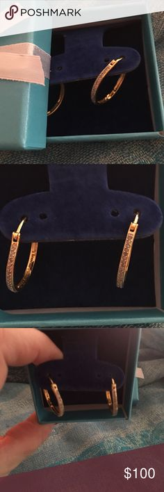 Just InNIB 1/4ct Pava 18k Gold Hoops These are brand new and beautiful boutique Jewelry Earrings