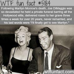 - Fact- : Joe DiMaggio and Marilyn Monroe - WTF fun facts www.letstfact.com