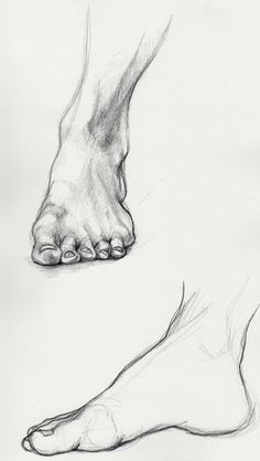 Learn To Draw People - The Female Body - Drawing On Demand Feet Drawing, Body Drawing, Life Drawing, Drawing Hands, Anatomy Art, Anatomy Drawing, Foot Anatomy, Anatomy Sketches, Human Anatomy