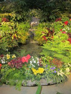 fleur-magnifiques jolie-cascade-de-jardin