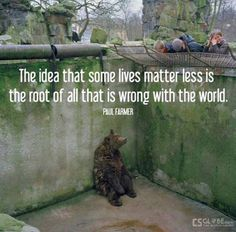 the idea that some lives matter less is the root of all that is wrong with the world - Jun 24 2015 07:12 PM