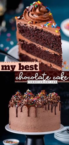 On the hunt for birthday cake recipes? This homemade chocolate cake is the BEST! Irresistibly moist and full of robust flavor, this chocolate dessert idea is what dreams are made of. Save this pin! Amazing Chocolate Cake Recipe, Best Chocolate Cake, Homemade Chocolate, Chocolate Desserts, Best Cake Recipes, Dessert Recipes, Chocolate Mayonnaise Cake, Cake Toppings, No Bake Cake